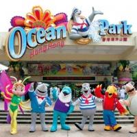 One-day Hong Kong Ocean Park Bus Tour