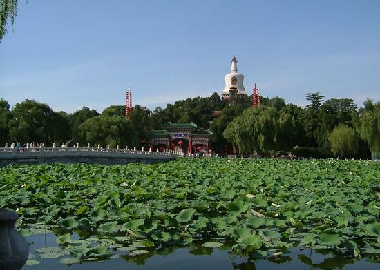 Beihai Park in Summer
