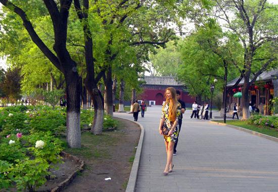 Beihai Park Summer