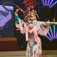 Beijing Opera, Peking Opera