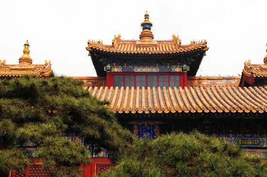 Lama Temple Building