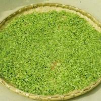 Tunxi Green Tea