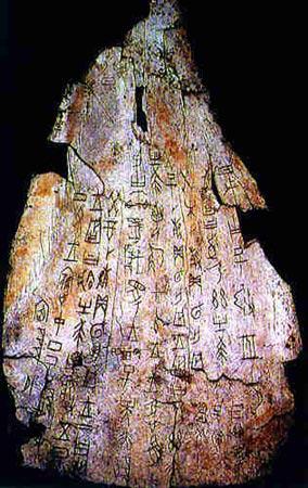 Carapace Bone Scripts 1