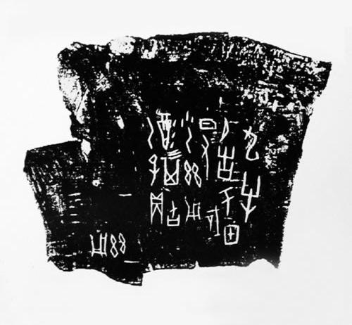 Carapace Bone Scripts 9