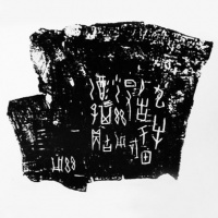 Carapace Bone Scripts