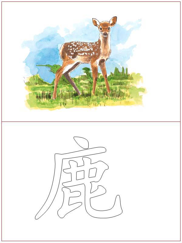 Chinese Language 6