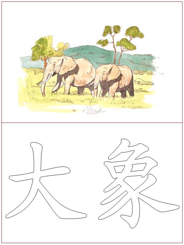 Chinese Language 13