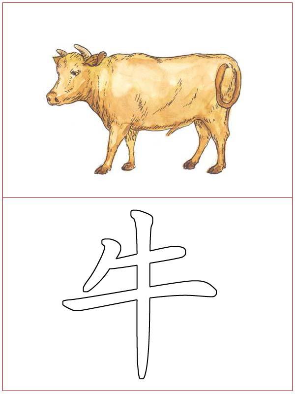 Chinese Language 9