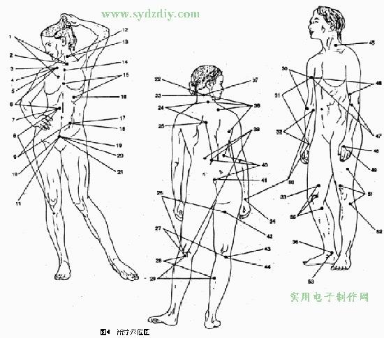 Culture Understanding-Body Structure