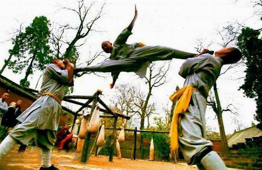 Culture Understanding-Acrobatics Fighting