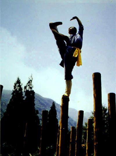 Culture Understanding-Martial Standing Exercise