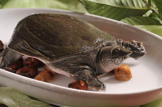 Anhui Food 6