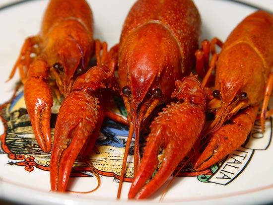 Guangdong Food 11