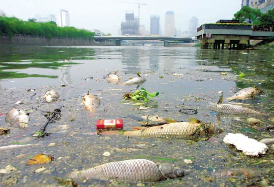 Environmental Protection in China 6