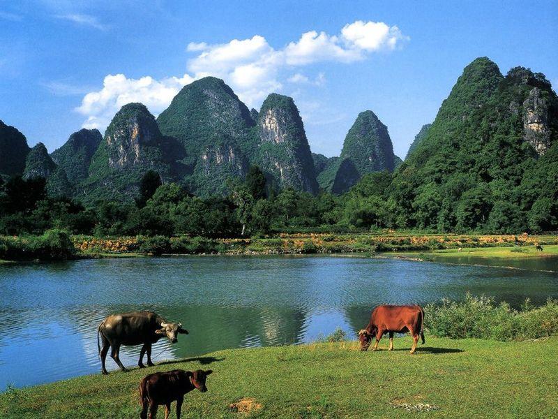 Li River Photo