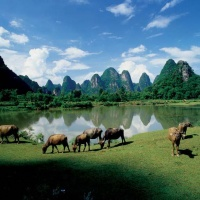 Guilin Photo Gallery