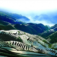 One-day Tour Longsheng Rice Terraces