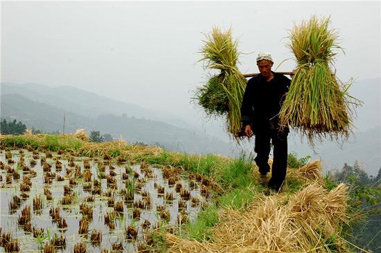 Tang'an Dong Village