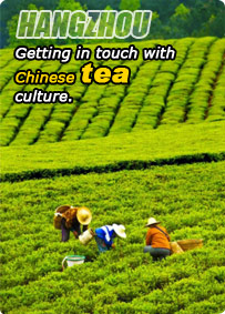 Hangzhou Tea Culture Tour