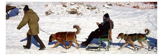 Harbin winter photo