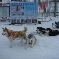 Mingdu Ski Field