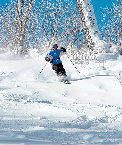 Harbin Ice and Snow World photos
