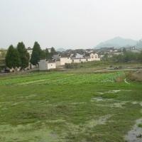 Xidi Village, Huangshan Tours