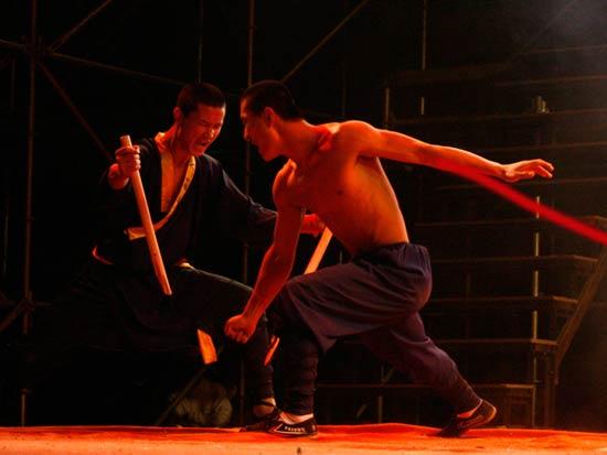 Chinese Wushu or Kung Fu