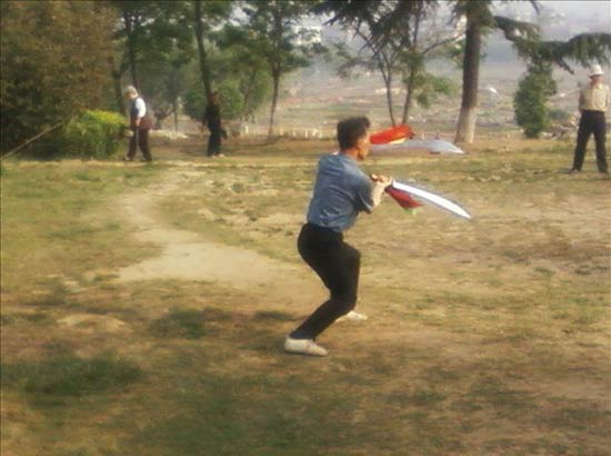 Chinese Wushu or Kung FuChinese Wushu or Kung Fu