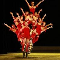 Acrobatics Show, Shanghai Tours