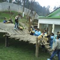 Wolong Nature Reserve, Sichuan Tours
