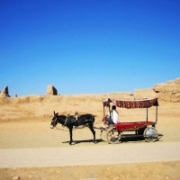 Anciet Gaochang City Xinjiang, Silk Road Tours