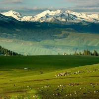 Bayinbuluke Grassland