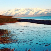 Swan Lake Natural Reserve