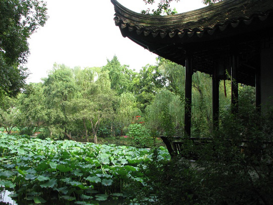 Humble Adiministrator's Garden, Garden View Suzhou