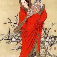 The Imperial Concubine of Han