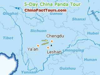 5-Day China Panda Tour