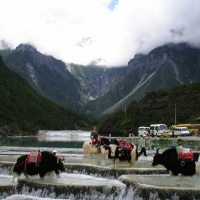 Jade Dragon Snow Mountain Lijiang, Yunnan Tours
