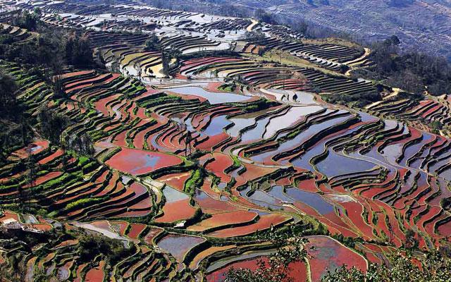 Yuanyang Rice Terraces Yuanyang Pictures Yuanyang Rice