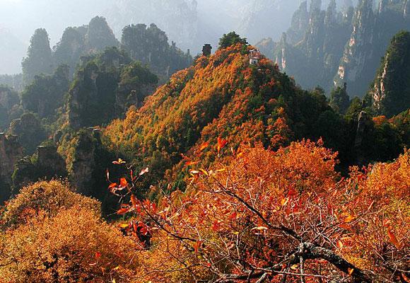 Wulingyuan Scenic Area Wulingyuan National Park
